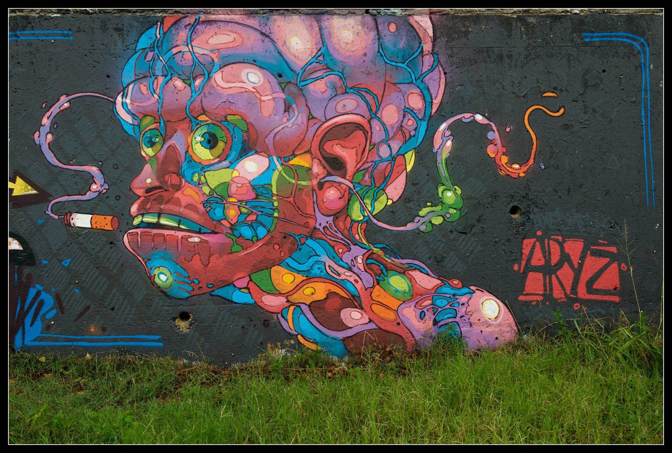 A human figure made out of graphic bioligical gore smokes for Best mural artist