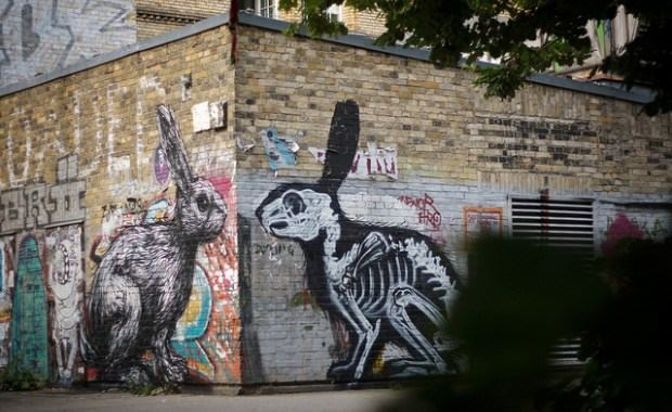 A rabbit meets its Xray reflection in this large graffiti mural by street artist ROA