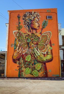 Beautiful creatures and plants spring forth from the chest of an eco warrior in this street art mural painted by Gonzalo Areúz