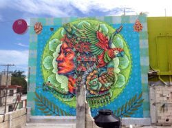 Creatures of the Mexican rainforest coexist with mankind in this large and colorful street art mural by Areúz